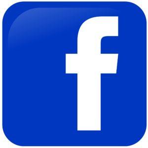 Ga naar de Facebook fotopagina van Singer Presikhaaf.